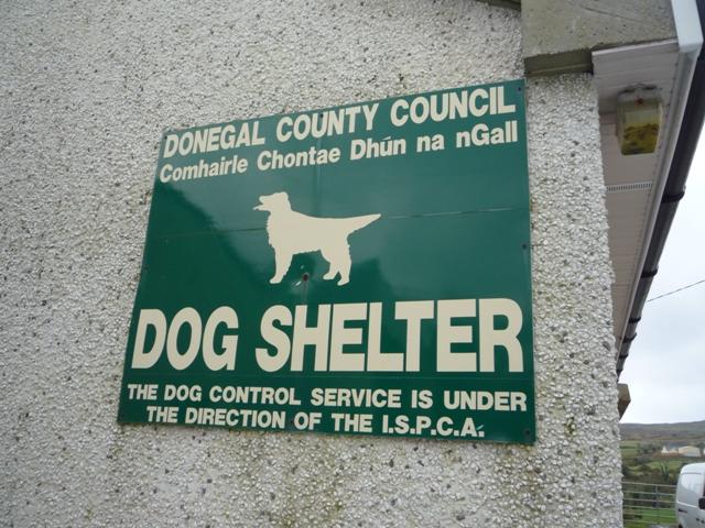Dog Shelter sign
